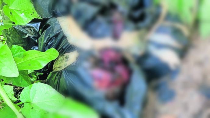 hallan bolsas de basura con restos humanos estado de putrefacción cadáver xochitepec morelos