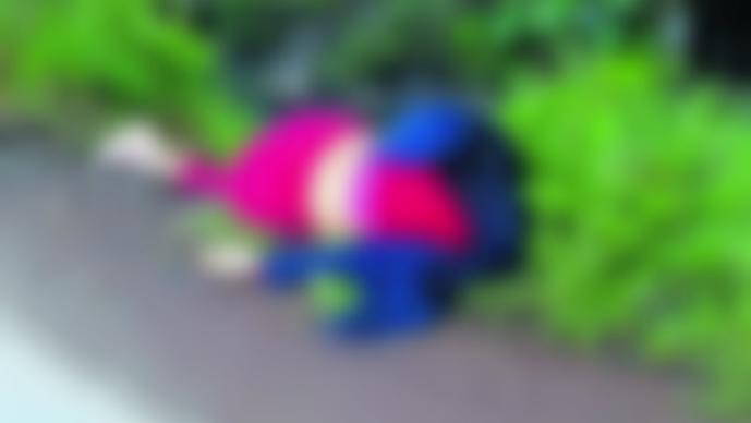 Feminicidios Edomex Valle de Chalco Izcalli Ecatepec Toluca Tultitlán Brenda Cruz