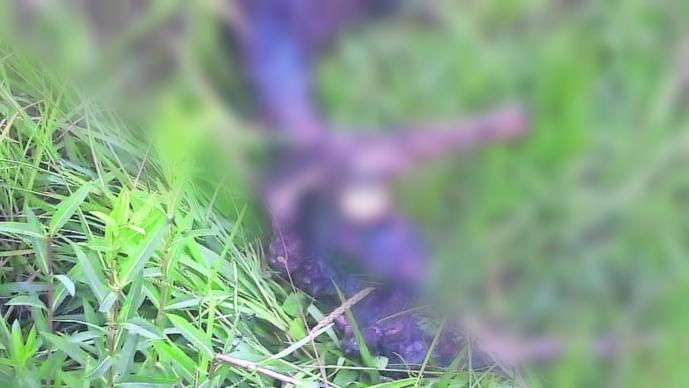 campesinos hallan cadáver huesos osamenta columna vertebral cráneo cabeza Atlatlahucan Morelos
