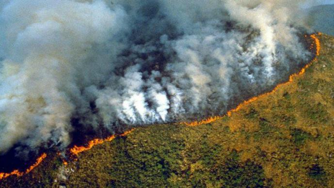 Aumenta deforestación del Amazonas ambientalistas culpan a Jair Bolsonaro