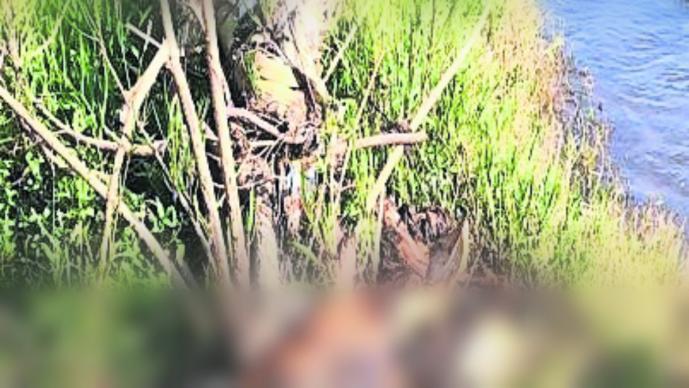 hallan cadáver cuerpo sin vida estado de descomposición destazado restos humanos amacuzac