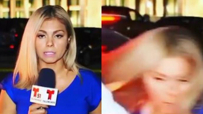 reportera telemundo casi atropellada video