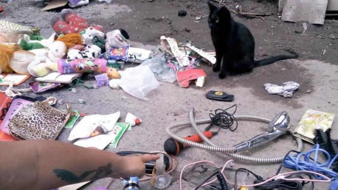 Gatito empresario atiende su propio puesto de chácharas, en tianguis de 'El Salado'