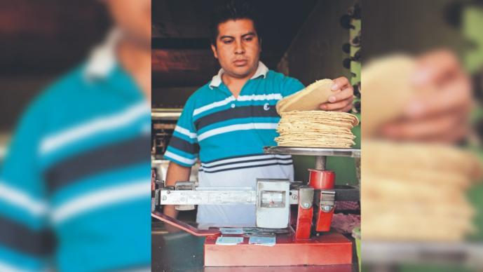 Advierten incremento de precio en tortilla, se prevé que llegue a 20 pesos el kilo