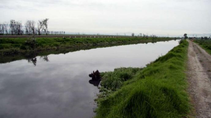 Hallan cadáver de un hombre en caudal del río Lerma, en Tolucla; no tenía huellas de violencia