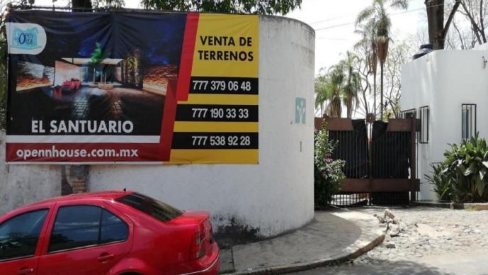 Denuncian tala ilegal de árboles por construcción de nueva unidad habitacional, en Morelos