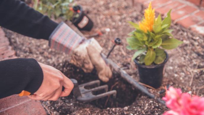Conviértete en el mejor jardinero del rumbo