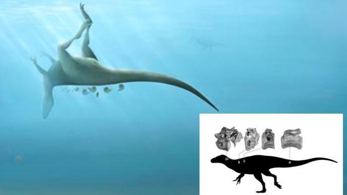 Descubren nueva especie de dinosaurio de hace 115 millones de años, familiar del T. Rex