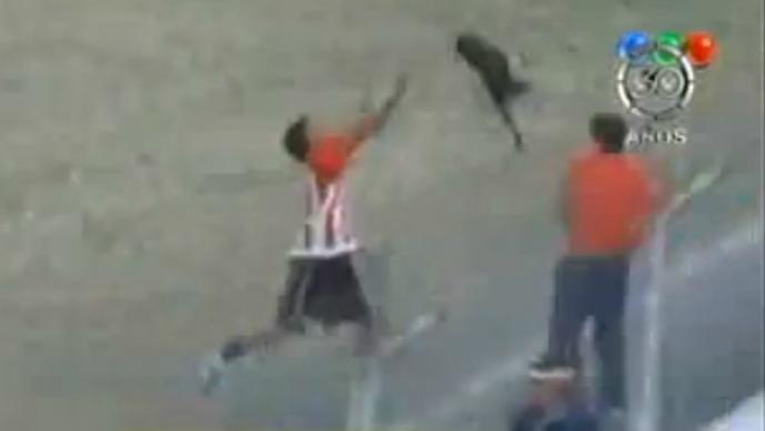 Avienta a un perro a las tribunas