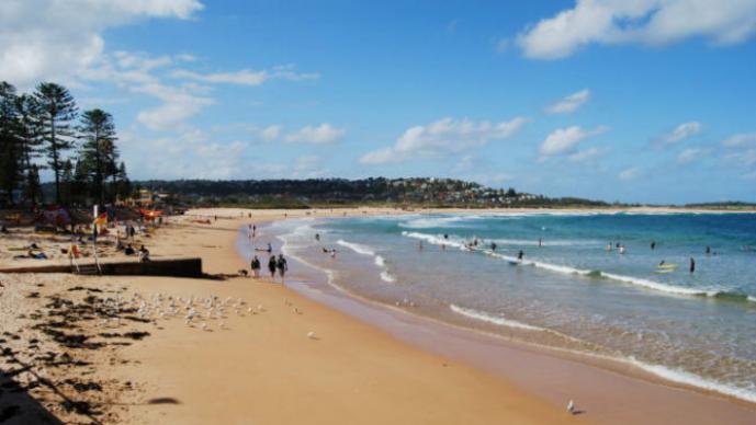 """Aparecen """"huevos alienígenas"""" en playas de Australia"""