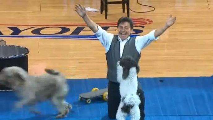 Este perro se convirtió en la estrella de la NBA, con sus mortales espectaculares