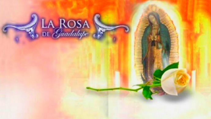 La Ros De Guadalupe