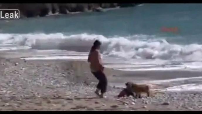 Perro salva a bebé de morir ahogado