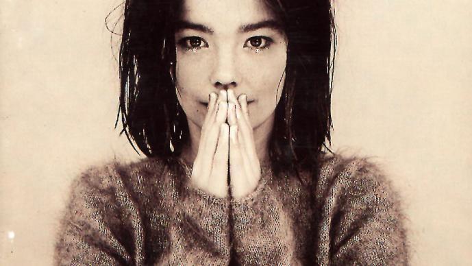 Björk. Debut