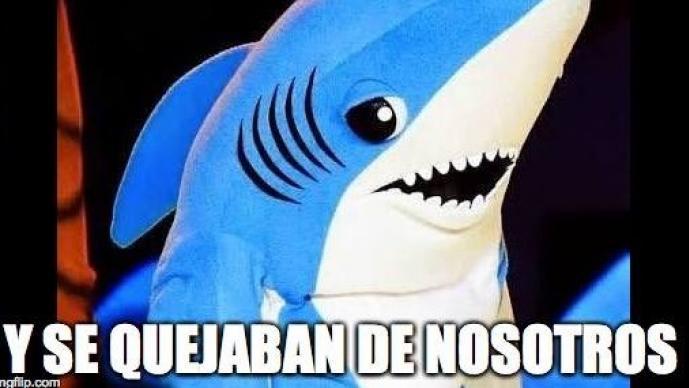 Extrañaron a Katy Perry y su famoso tiburón (Foto: Cortesía Twitter)