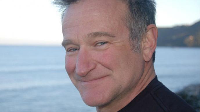 Robin Williams, mansión, propiedad, valle de Napa, Villa Sorriso, casa de sonrisas, agentes de bienes raíces