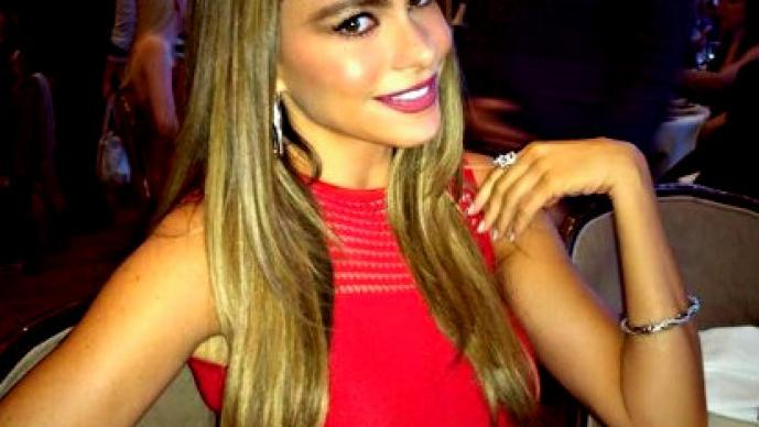 Sofía Vergara ya pirnsa mejorar su aspecto en el quirófano