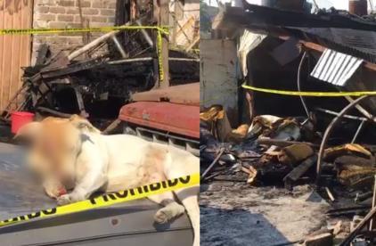 Mueren tres personas en incendio en vivienda de Chalco, además se queman perros