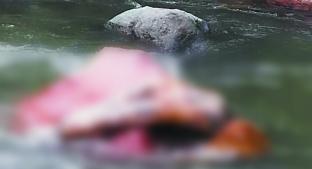 Hallan cuerpo sin vida que flotaba en un río, en Coatepec Harinas. Noticias en tiempo real