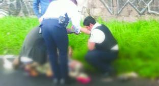Camioneta embiste a abuelito y le rompe las piernas, en Metepec. Noticias en tiempo real