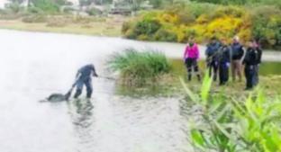 Encuentran a ladrón flotando en la Laguna de Xico, en Valle de Chalco. Noticias en tiempo real