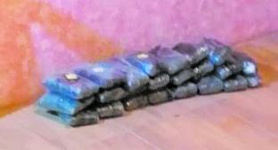 Decomisan 27 kilos de cocaína en una vivienda en San Pablo Autopan. Noticias en tiempo real