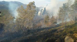 Se registran dos incendios de pastizal seco, en la Gustavo A. Madero. Noticias en tiempo real