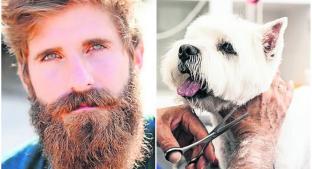 Revelan que las barbas largas tienen más bacterias que un perro. Noticias en tiempo real