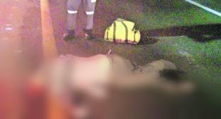 Muere atropellado por un automovilista que se dio a la fuga, en Acambay . Noticias en tiempo real