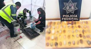 Autoridades del la CDMX investigan la llegada de venezolanos al país con cocaína pura. Noticias en tiempo real