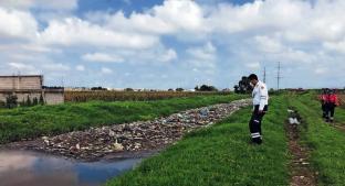 Basura satura ríos y canales en el Edomex, autoridades advierten de inundaciones. Noticias en tiempo real