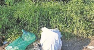 Campesinos encuentran entre la basura el cadáver de hombre embolsado en Morelos. Noticias en tiempo real