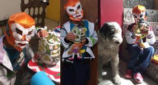 Santi busca ganar concurso de Calaveritas de Chilacayote con personaje de la lucha libre. Noticias en tiempo real