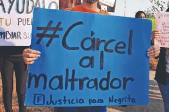 Arrojó ácido a perrita y la mató, pero no es delito grave en Morelos y libra la cárcel