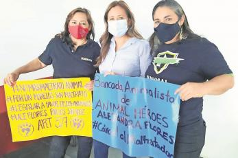 Maltratar a las mascotas ya será castigado en Morelos, el Congreso lo tipificó como delito