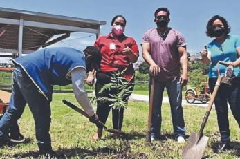 Universitarios y maestros arrancan la jornada de forestación, en Morelos