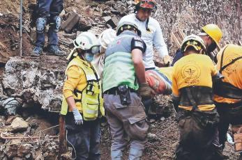 Perrita fue golpeada a palos y colgada de árbol, refugio que la salvó se derrumbó en Xochimilco