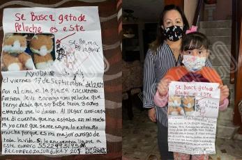Niña pierde a su mejor amigo de peluche en CDMX, manda desgarrador mensaje y se hace viral