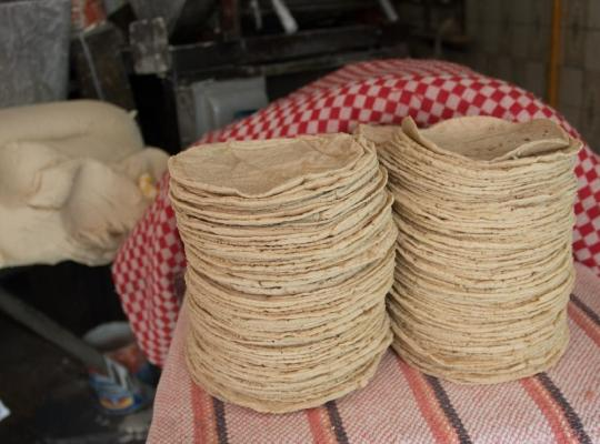 ¿Cómo denuncio a Profeco el abuso en precios de tortilla, huevo y demás alimentos básicos?
